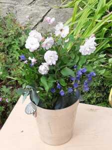Flowers on the Doors Festival 2020, Dry Hill Lane, Sundridge